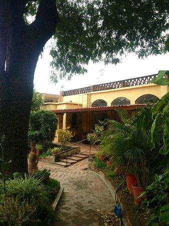 Casa Panchita: Garden
