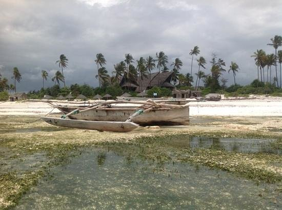 Azanzi Beach Hotel : Lowtide
