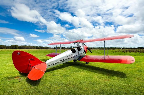 Tiger Moth Joy Rides: Climb aboard, come fly with us