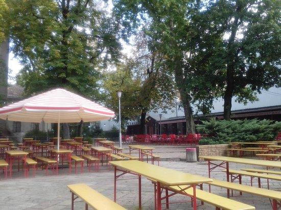 Prater Garten : O Biergarten.