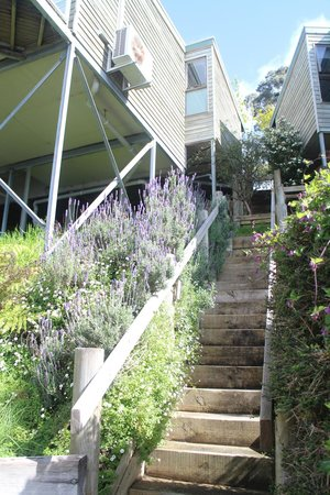 the stairway up from cabins 8 and 9 to the restaurant/reception arrea