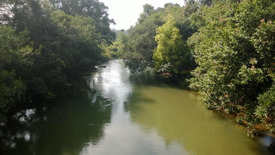 Wild Woods Spa and Resort: river from another angle