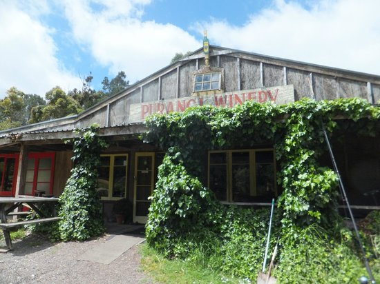 Purangi Winery Pizzeria: Rustic and inviting
