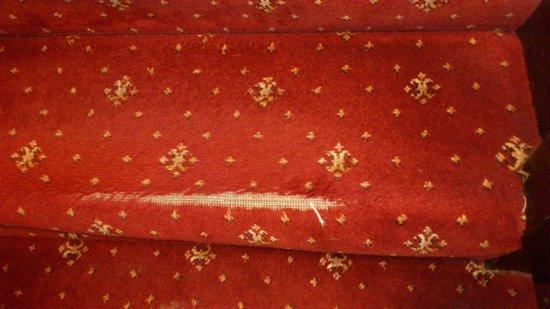 Lion Quays: Stair carpet