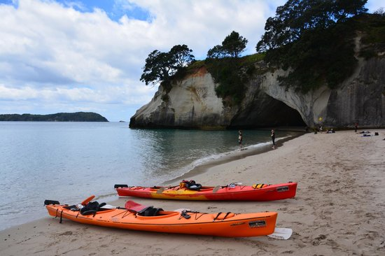 Cathedral Cove Kayak Tours : The beautiful Cathedral Cove