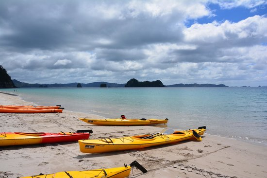 Cathedral Cove Kayak Tours : Hahei Beach