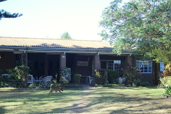 Orange Elephant Backpackers: Addo Backpackers - main house