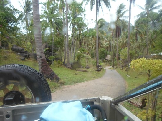 Koh Tao Star Villa: Road up to the villa