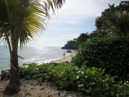 Chiringuito Beach Bar and Restaurant: la spiaggia del Chiringuito