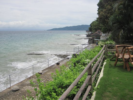 Sail Anilao: The garden of the resort at the seaside