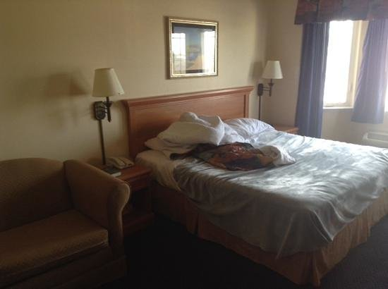 Gateway Inn and Suites Hotel: king size bed and sofa bed