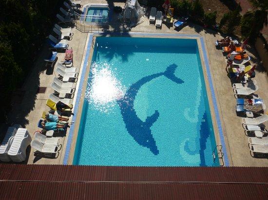 Albatros Apartments: main pool