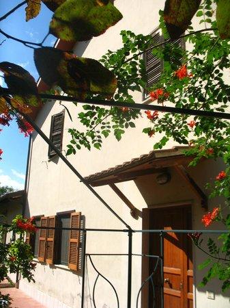Il giardino di Ines B&B : fiori d'autunno