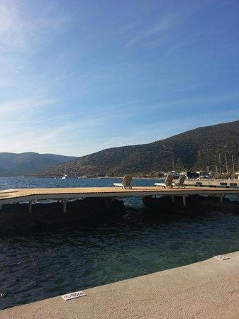 Club Med Bodrum Palmiye: vue mer