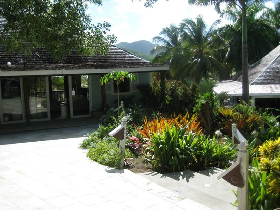 The grounds of Cocobay Resort