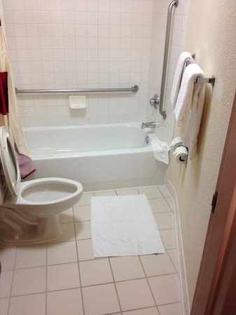SpringHill Suites Minneapolis-St. Paul Airport/Eagan: bathroom