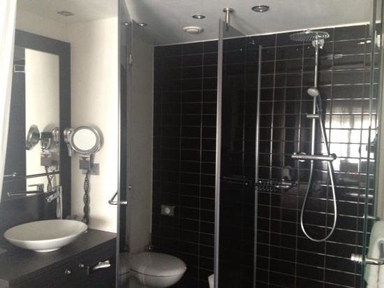 Park Hotel Amsterdam: Shower and toilet