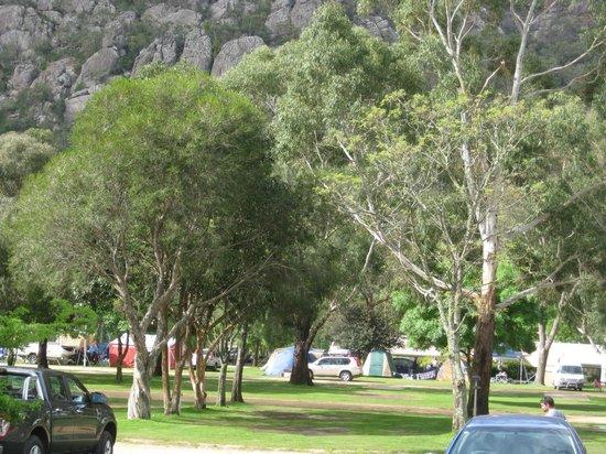 Halls Gap Lakeside Tourist Park: Shady and Grassy campsites