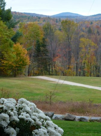 Carter Notch Inn: View From Front Porch