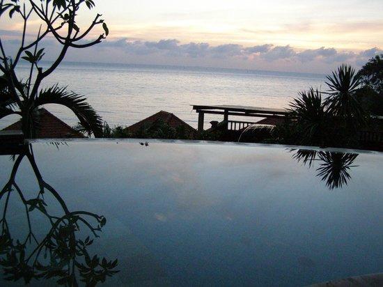 Blue Moon Villas : Pool view