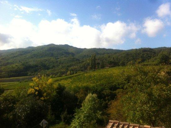 Casa al Chianti B&B: View from our room