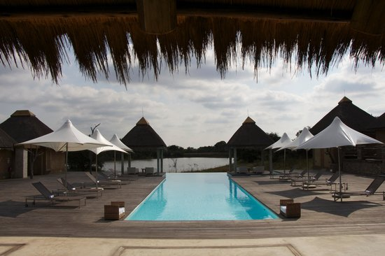 Kapama River Lodge: Kapama's swimming pool