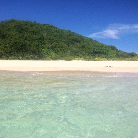 Caribbean Sea Adventures: Buck Island
