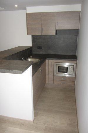 le coin kitchenette avec micro ondes vier frigo et placard mais sans vaisselle ni ustensile. Black Bedroom Furniture Sets. Home Design Ideas