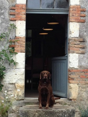 Le Moulin Bregeon: Figaro greeting guests at front door