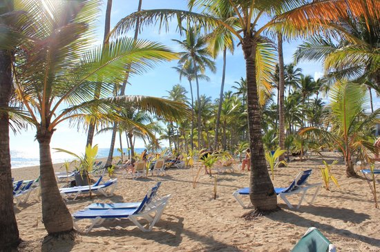 Hotel Riu Naiboa: Strand