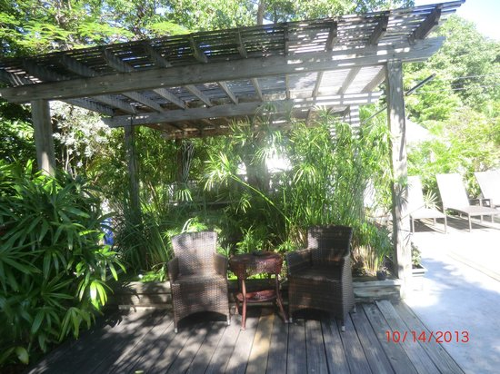 Merlin Guest House Key West: Garden area