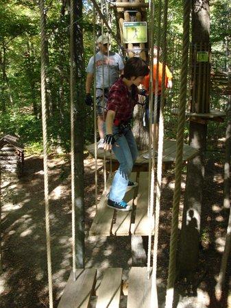 Go Ape Treetop Adventure Course : swinging