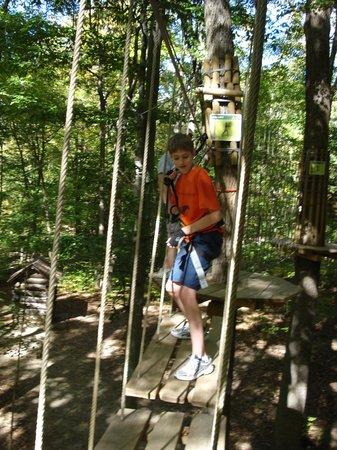 Go Ape Treetop Adventure Course : swinging, swinging