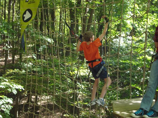 Go Ape Treetop Adventure Course: Tarzan swing/net