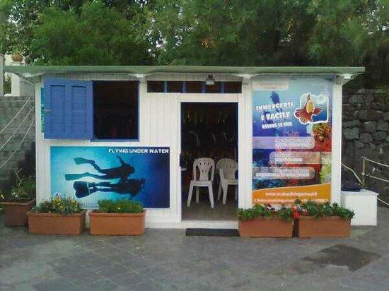 Scuba Diving School: Diving