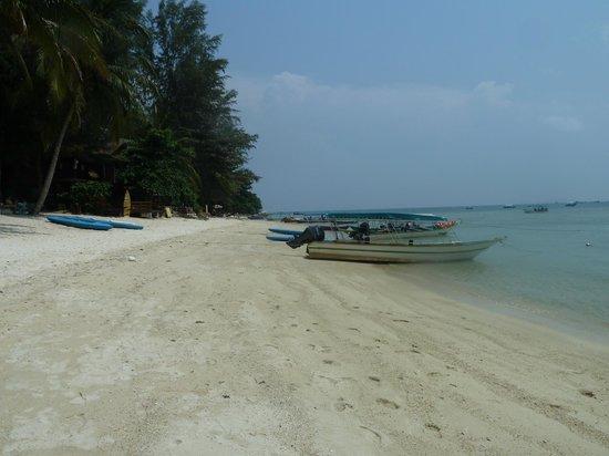 Mama's Place: Beach..