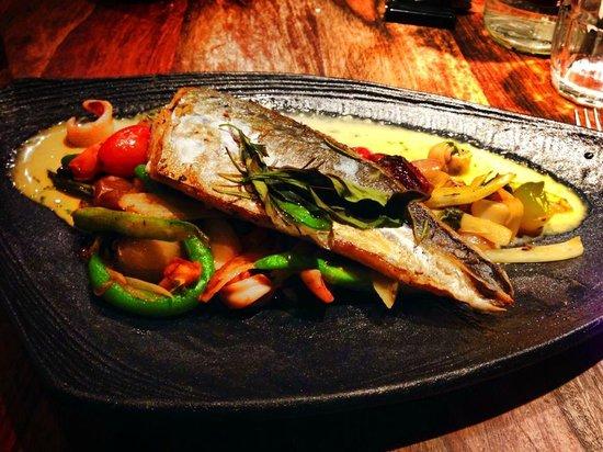 Shila - Sharon Cohen's Kitchen & Bar: Fish Fillet