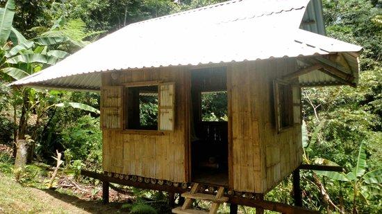 Finca Tierra Organic Permaculture Farm & Eco-Lodge: Bamboo cabin