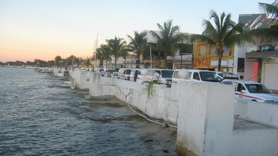 Flamingo Hotel: Shore of Cozumel near downtown.