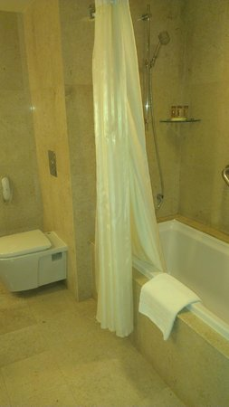 Royal Orchid Sheraton Hotel & Towers: Bathroom