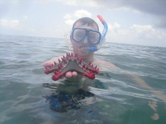 Bamburi Beach Hotel: Scuba diving (arranged by hotel)