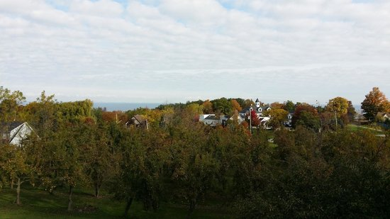 Crown Ridge Bed & Breakfast: View from my private balcony.  Lake Ontario in the distance