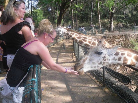 Bamburi Beach Hotel: Day out to the zoo