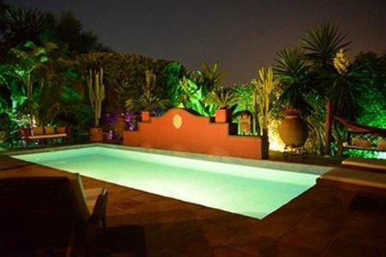 Casa las palmeras suites adults only b b reviews price - La casa de las palmeras ...