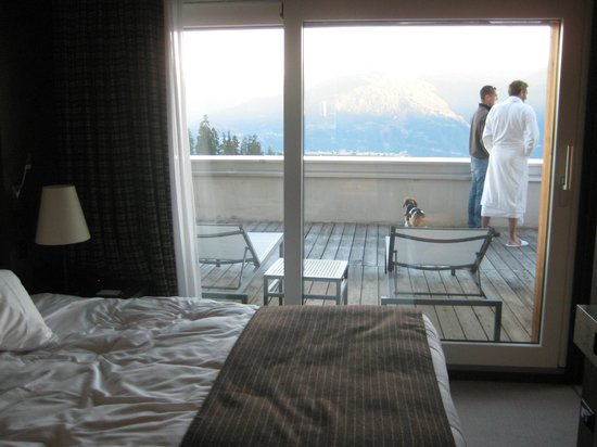 Crans Ambassador - Luxury Sport Resort : View from the room