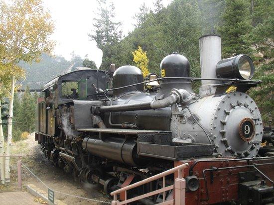Georgetown Loop Historic Railroad: 1923 Shay Locomotive
