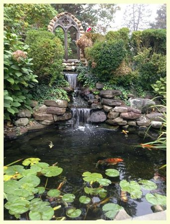 Hamanassett Bed & Breakfast : Koi Pond out front