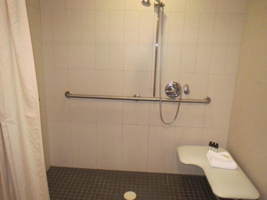 Hotel Belleclaire: Shower