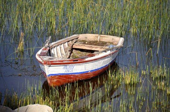 Titilaka: Boat