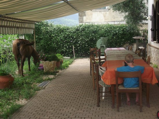 Italy Farm Stay: Definitely a Farm